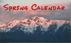 Ignite Amplify Spring Calendar icon